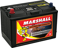 Marshall Deputy Batteries